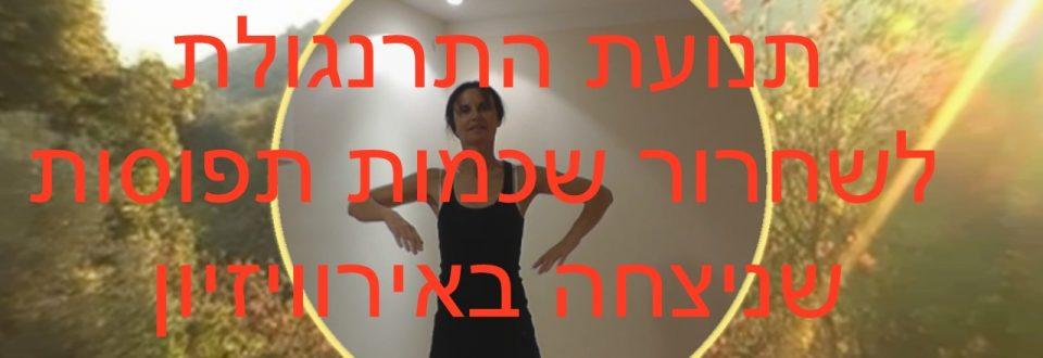 התרגיל לשחרור שכמות תפוסות שניצח את האירוויזיון בזכות נטע ברזילי (Netta Barzilai) המדהימה בשיר Toy
